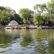 甘肃平凉柳湖公园初夏碧波荡漾,柳与湖相映成趣引人醉