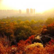 秋色看兰州