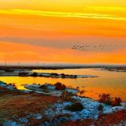 景泰白墩子国家盐沼湿地公园